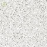 Dupont Corian Silver Birch SV